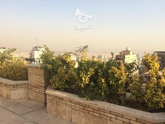 142متر ولنجک (ایده آل سرمایه گذاری ) در گروه خرید و فروش املاک در تهران در شیپور-عکس1