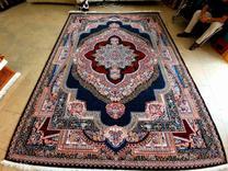 فرش  باغ معلق سرمه ای  در شیپور