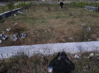نمک ابرود خ بهرام450متربافت وسندمتری در شیپور-عکس کوچک