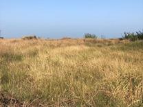 فروش زمینپلاک اول دریا مسکونی 3400 متر در سرخرود در شیپور