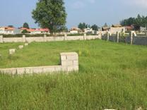 فروش زمین مسکونی 345 متر در چاف و چمخاله در شیپور