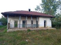 فروش خانه و کلنگی 3000 متر در رضوانشهر در شیپور-عکس کوچک