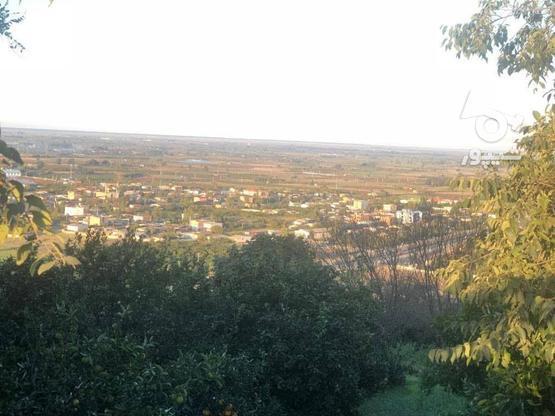 فروش زمین 310 متری در آمل در گروه خرید و فروش املاک در مازندران در شیپور-عکس1