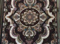 فرش ارزان قیمت کد شهیاد 12متری در شیپور-عکس کوچک
