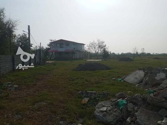 فروش زمین مسکونی شهرکی 361 متر در زیباکنار در گروه خرید و فروش املاک در گیلان در شیپور-عکس1