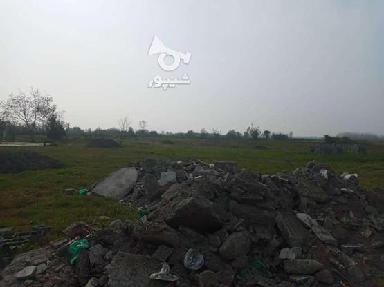 فروش زمین مسکونی شهرکی 361 متر در زیباکنار در گروه خرید و فروش املاک در گیلان در شیپور-عکس2