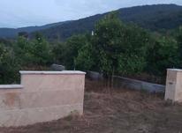370متر زمین شهرکی داخل بافت قیمت استثنایی در شیپور-عکس کوچک
