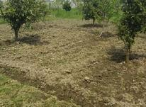 فروش زمین اداری و تجاری 2200 متر در محمودآباد در شیپور-عکس کوچک