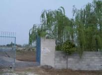 زمین اداری و تجاری 2250 متر در آمل در شیپور-عکس کوچک