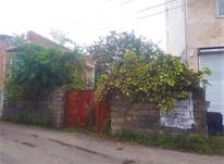 زمین مسکونی 180 متری در چالوس در شیپور-عکس کوچک