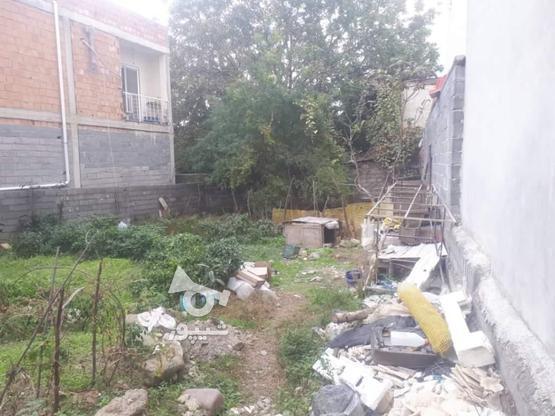 زمین مسکونی 180 متری در چالوس در گروه خرید و فروش املاک در مازندران در شیپور-عکس2