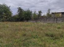 فروش زمین مسکونی 262 متر در تنکابن در شیپور-عکس کوچک