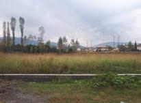 فروش زمین کشاورزی 200 متری در چالوس در شیپور-عکس کوچک