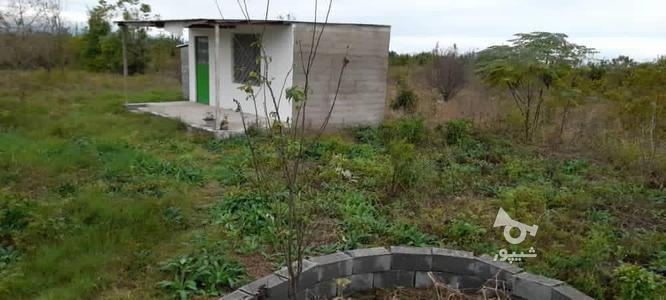 فروش زمین باغی 2700 متر در آمل در گروه خرید و فروش املاک در مازندران در شیپور-عکس5