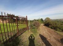 فروش زمین کشاورزی 3450 متر روستای مرمت در شیپور-عکس کوچک