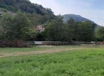 فروش زمین شهرکی 500 متر//قطعه اول جنگل نوشهر در شیپور-عکس کوچک