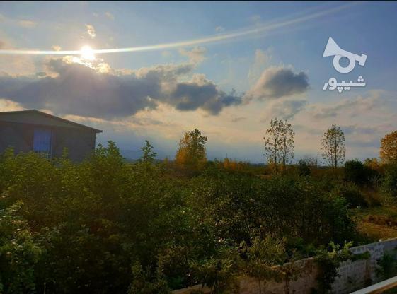 فروش ویلا دو طبقه 150 متری با 730متر زمین در تنکابن در گروه خرید و فروش املاک در مازندران در شیپور-عکس2