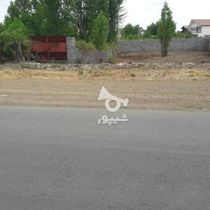 فروش زمین تجاری مسکونی 388 متر در لنگرود.چمخاله در گروه خرید و فروش املاک در گیلان در شیپور-عکس3