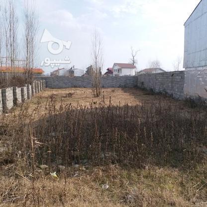 فروش زمین تجاری مسکونی 388 متر در لنگرود.چمخاله در گروه خرید و فروش املاک در گیلان در شیپور-عکس4
