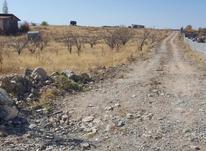 فروش زمین کشاورزی 1200 متر در دماوند آینه ورزان در شیپور-عکس کوچک