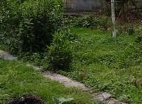 زمین مسکونی 3000 متر در محمودآباد در شیپور-عکس کوچک