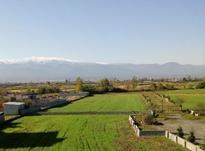 زمین مسکونی 1200 متر در محمودآباد در شیپور-عکس کوچک