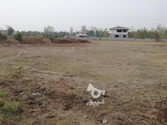 فروش زمین مسکونی 362 متر در چاف و چمخاله در گروه خرید و فروش املاک در گیلان در شیپور-عکس1