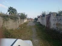 فروش زمین مسکونی 260 متر در چاف و چمخاله در شیپور-عکس کوچک