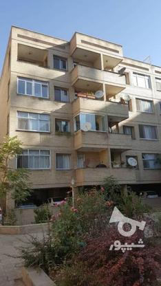 118 متر فول امکانات در فلامک شهرک غرب در گروه خرید و فروش املاک در تهران در شیپور-عکس16