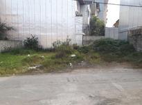 زمین مسکونی ۲۱۰ متر در لنگرود در شیپور-عکس کوچک
