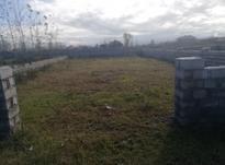 فروش زمین مسکونی 294 متر در چاف و چمخاله در شیپور-عکس کوچک