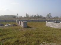 فروش زمین مسکونی 355 متر در چاف و چمخاله در شیپور-عکس کوچک