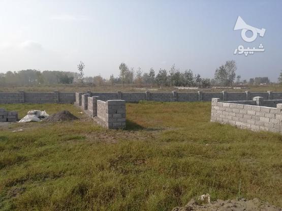 فروش زمین مسکونی 355 متر در چاف و چمخاله در گروه خرید و فروش املاک در گیلان در شیپور-عکس1