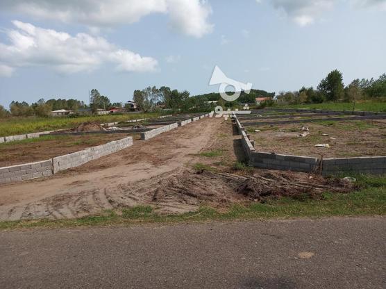300متر زمین مسکونی ساحلی در گروه خرید و فروش املاک در گیلان در شیپور-عکس1