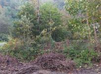 131 متر زمین مسکونی در کوهبنه در شیپور-عکس کوچک