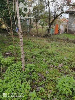 فروش زمین مسکونی 430 متر در خشکبیجار در گروه خرید و فروش املاک در گیلان در شیپور-عکس2
