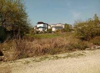فروش زمین مسکونی 276 متر سندداردر چالوس در شیپور-عکس کوچک