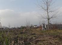 زمین مسکونی جاده کیاشهر  در شیپور-عکس کوچک