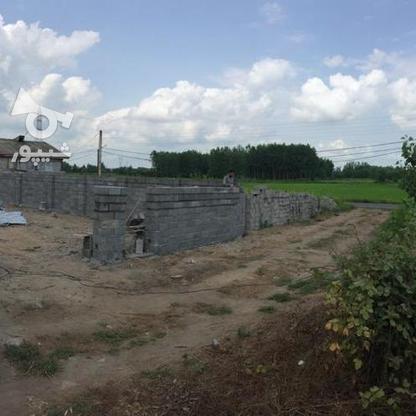 فروش زمین مسکونی 411 متر در آستانه اشرفیه در گروه خرید و فروش املاک در گیلان در شیپور-عکس3