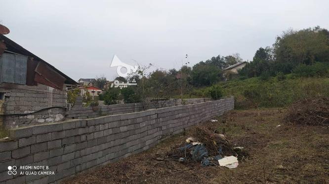 327 متر زمین مسکونی در کوهبنه در گروه خرید و فروش املاک در گیلان در شیپور-عکس4