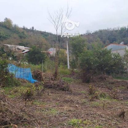 327 متر زمین مسکونی در کوهبنه در گروه خرید و فروش املاک در گیلان در شیپور-عکس9