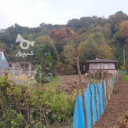 327 متر زمین مسکونی در کوهبنه در گروه خرید و فروش املاک در گیلان در شیپور-عکس7