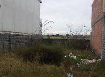 فروش زمین 192 متر در خیابان امام پشت شفا بابلسر در شیپور-عکس کوچک
