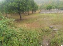 زمین الحاق به بافت در شیپور-عکس کوچک