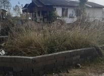 فروش زمین مسکونی 100 متر در چالوس در شیپور-عکس کوچک