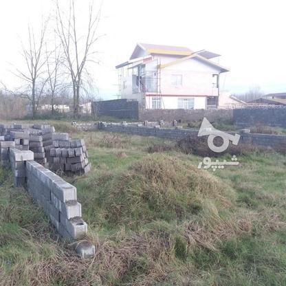 فروش زمین مسکونی 300 متر در لنگرود در گروه خرید و فروش املاک در گیلان در شیپور-عکس3