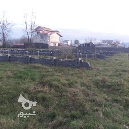 فروش زمین مسکونی 300 متر در لنگرود در گروه خرید و فروش املاک در گیلان در شیپور-عکس5