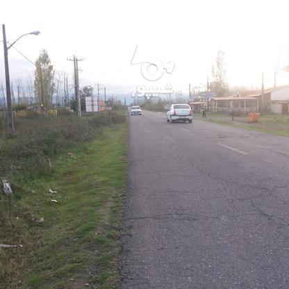 فروش زمین مسکونی 300 متر در لنگرود در گروه خرید و فروش املاک در گیلان در شیپور-عکس6