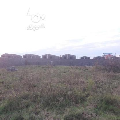 فروش زمین مسکونی 300 متر در لنگرود در گروه خرید و فروش املاک در گیلان در شیپور-عکس7