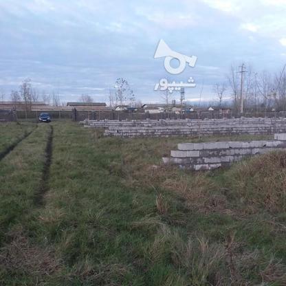 فروش زمین مسکونی 300 متر در لنگرود در گروه خرید و فروش املاک در گیلان در شیپور-عکس8